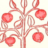 Pomegranate Tree note card